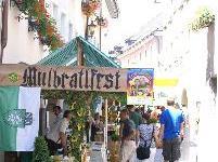Das Mulbratlfest findet bereits zum achten Mal in Bludenz statt.