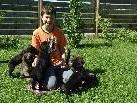 Dominik Bachmeier mit den Hundebabies von Aika