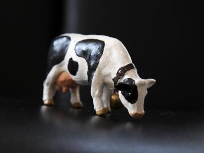 Eine besondere Ausstellung zum Thema Kuhstallwelt, wird ab August in Nenzing zu sehen sein.