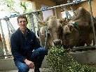 Gutes Futter für seine Kühe. Das produziert Jürgen Bereuter gewöhnlich auf seinen Feldern. Auch heuer soll es mit dem Heu trotz des schlechten Wetters der letzten Wochen noch etwas werden.