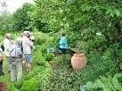 """Im liebevollen Garten der Staudengärtnerei PORSCH - """"Schattenpflanzen ins recht Licht gerückt!"""""""