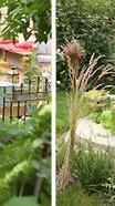 Step-by-Step Gardening durch alle Jahreszeiten
