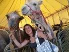 Vanessa verstand sich mit den Kamelen besonders gut.
