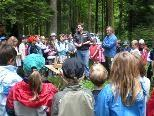 Volksschüler tauschten das Klassenzimmer mit dem Wald.