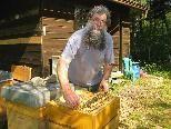 Der Hobby-Imker Wolfram Hager mit einem seiner sieben Bienenvölker in den Dornbirner Achauen.