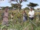 Helfen Sie durch die Caritas mit, in Äthiopien Wunder möglich zu machen