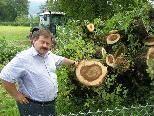 """Dr. Hubert F. Kinz  mit den Überresten des """"Baumriesen"""""""