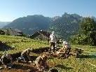 Unter der Leitung von Prof. Rüdiger Krause finden derzeit Ausgrabungen am Bartholomaeberg statt.