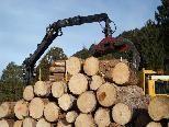 An drei verschiedenen Terminen wird der Stand Montafon Servitutsholz ausgeben. SYMBOLFOTO