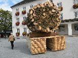 Riesenbuschel schmückt den Rathausplatz in Dornbirn