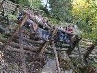 Die Lehrlinge erholen sich bei einer kurzen Pause von ihrer Waldarbeit.