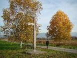 Das mächtige Wegkreuz steht im Naturschutzgebiet nördlich von Lustenau in einer prachtvollen Landschaft.