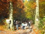 Der Wildpark Feldkirch zeigt sich im Moment von seiner schönsten und buntesten Seite