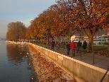 Herrliches Ambiente am Bodensee