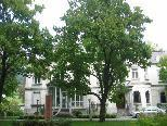 Musik in der Villa Grünau