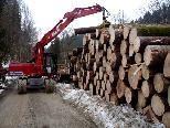 Holzarbeiten auf der ehemaligen Trasse der BW-Bahn.