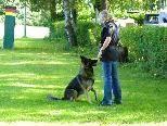 Kurs zur Hundeerziehung