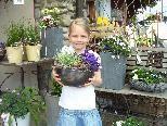 Bei der großen Sommerausstellung in der Gärtnerei Huschle werden Blumenträume wieder wahr.