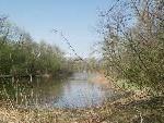 """Beim zweiten """"Erlebnis Natur""""-Termin geht´s an den Alten Rhein."""