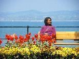 Gartenkultur direkt am Bodensee genießen