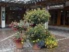 Blumenschmuck beim Gemeindeamt Gaschurn