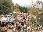 Freigelände Flohmarkt in Altach