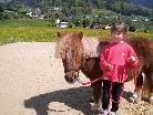 Kinder sind zum Ponyreiten  am Löwenhof eingeladen.