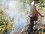 Knapp an der Katastrophe vorbei: Mitarbeiter der Agrargemeinschaft Rankweil entdeckten den Brand.