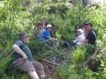Mitarbeit bei den Bergwaldprojektwochen im Großen Walsertal