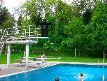 """Viele Badegäste staunten nicht schlecht, als sie diesen """"Gorilla"""" auf dem 3-Meter-Brett erblickten"""