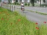 Ein Radweg für Meiningen