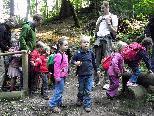 Gemeinsam den Wald erleben
