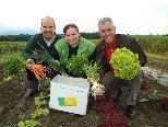 Allerlei Gemüse aus nachhaltig-biologischer Wirtschaftsweise.