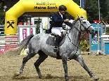 Am vergangenen Wochenende wurde bei den 45. Montafoner Pferdesporttagen das CSI Schruns-Tschagguns-Ambassador Class ausgetragen.