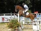 Auf der Reitanlage des Reitclub Montafon in Schruns-Tschagguns beginnt heute, Freitag, 5. August, das erste Wochenende der 45. Pferdesporttage Montafon (Bild: 31. Juli 2009).