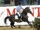 Die 45. Montafoner Pferdesporttage in Schruns-Tschagguns bieten ein interessantes Programm mit Spitzenpferden, hervorragenden Reitern u. v. m.