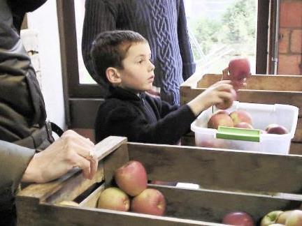 Filmreihe Bio Austria: Good Food Bad Food - Anleitung für eine bessere Landwirtschaft