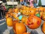 Kürbisschnitzen mit tollen Preisen am 2. Oktober am Mahlerhof in Höchst