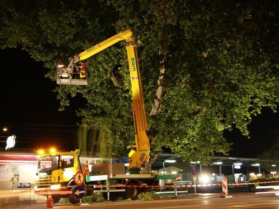 Baumschneidearbeiten mit LKW-Arbeitsbühne sichern Bahnübergang.