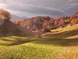 Herbststimmung auf Hinterbarnáls/Bludesch