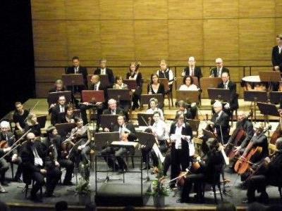 Orchester der Musikfreunde im Landestheater