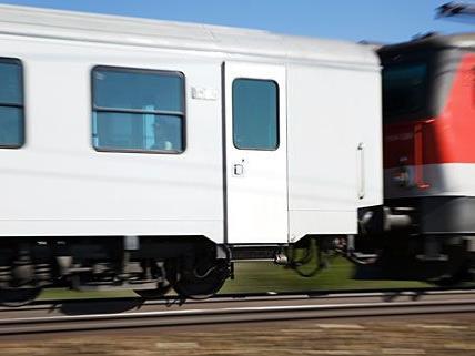Trotz Notbremsung erfasste der Zug das Pferd tödlich