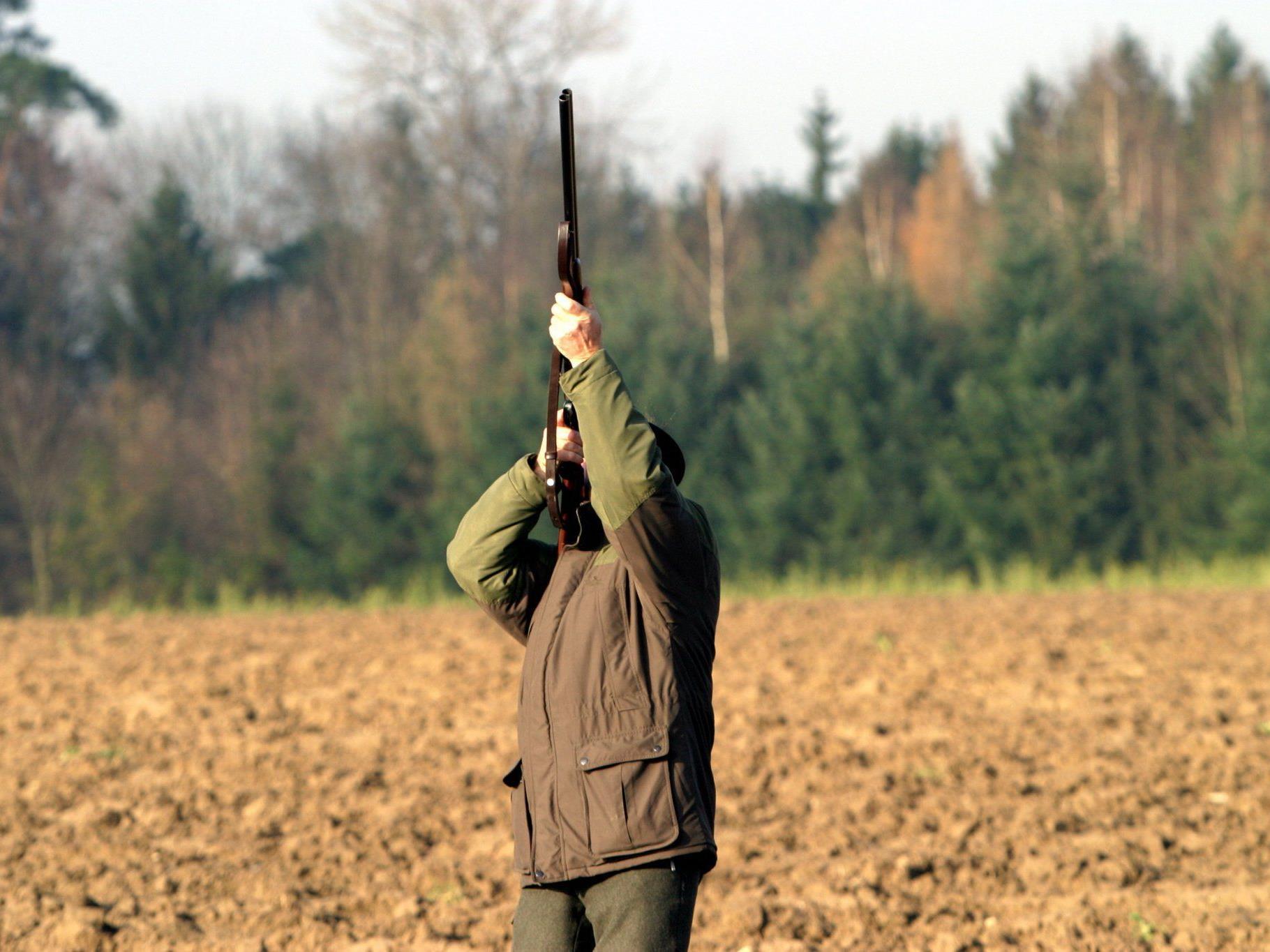 Ein 38-jähriger Jäger wurde von einer Schrotkugel im Auge schwer verletzt.