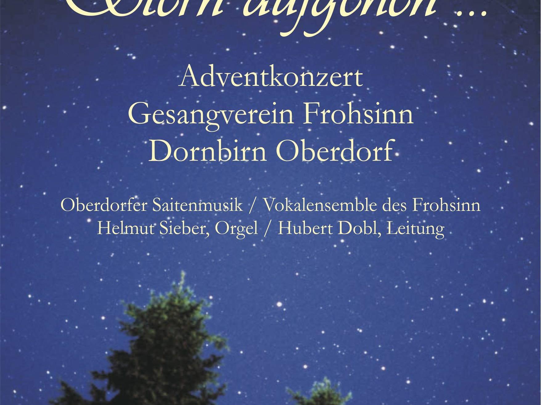 Plakat Adventkonzert 2011
