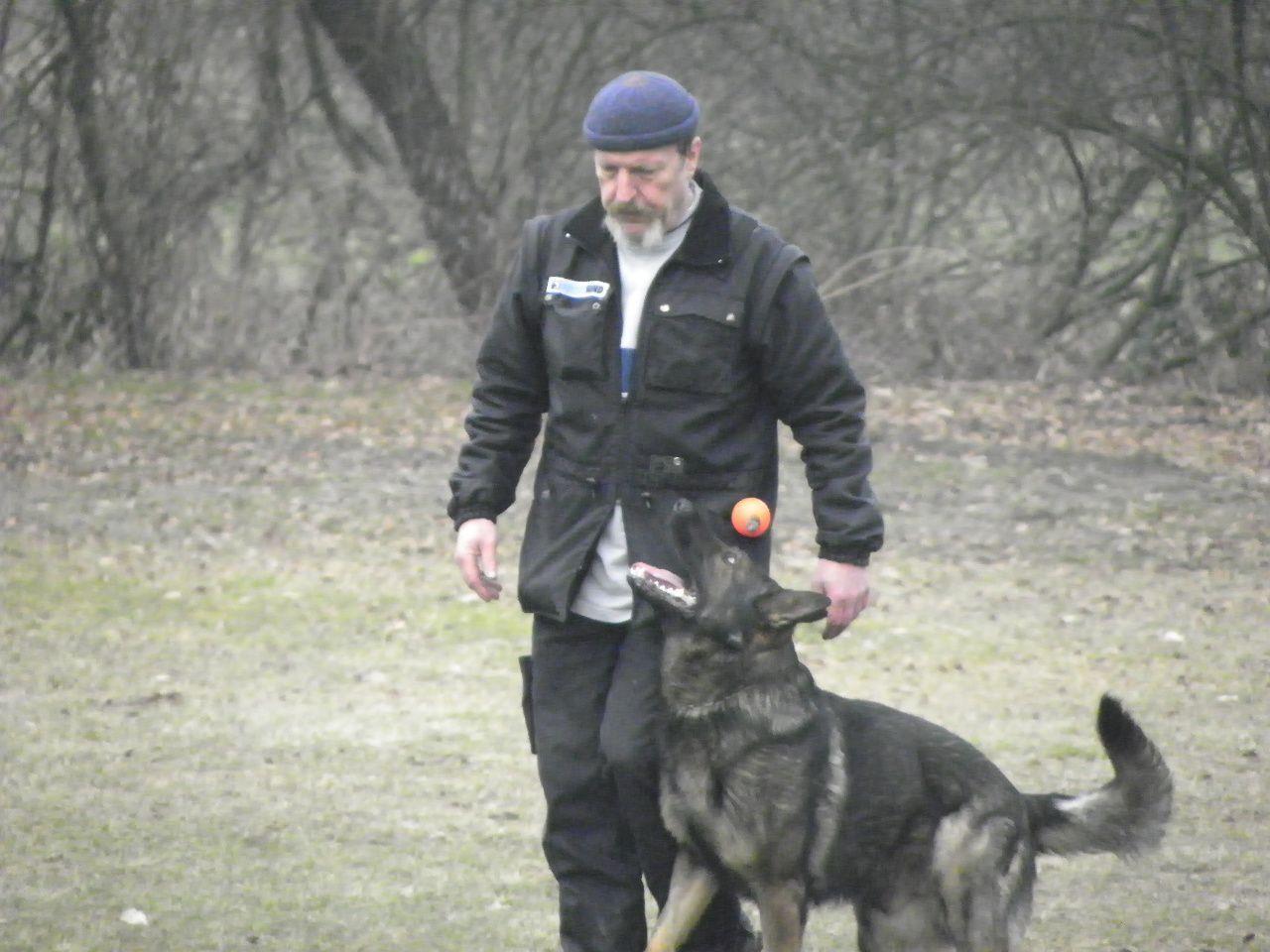 Hundeerziehung ist oberstes Gebot