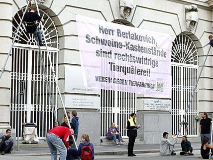 Tierschützer demonstrieren nun in Innsbruck