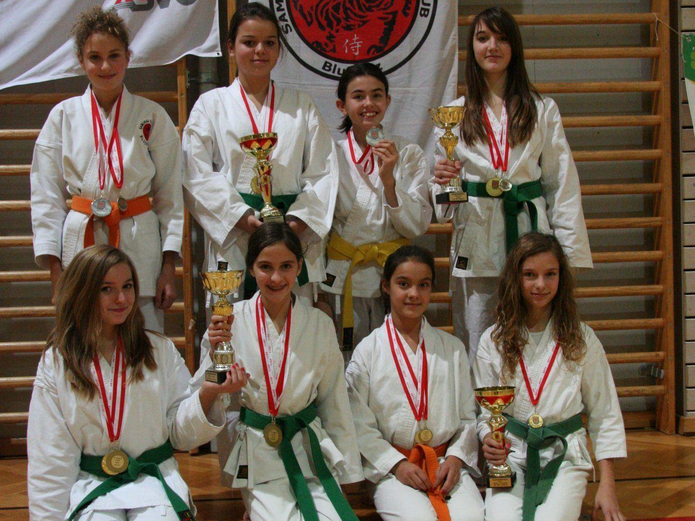 Das erfolgreiche Karate-Team