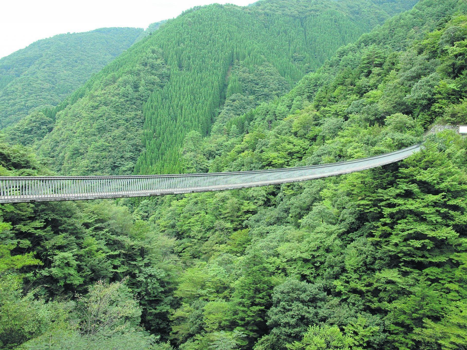 Einst waren Hängebrücken die einzigen Zugangswege zu den Gokanosho-Weilern