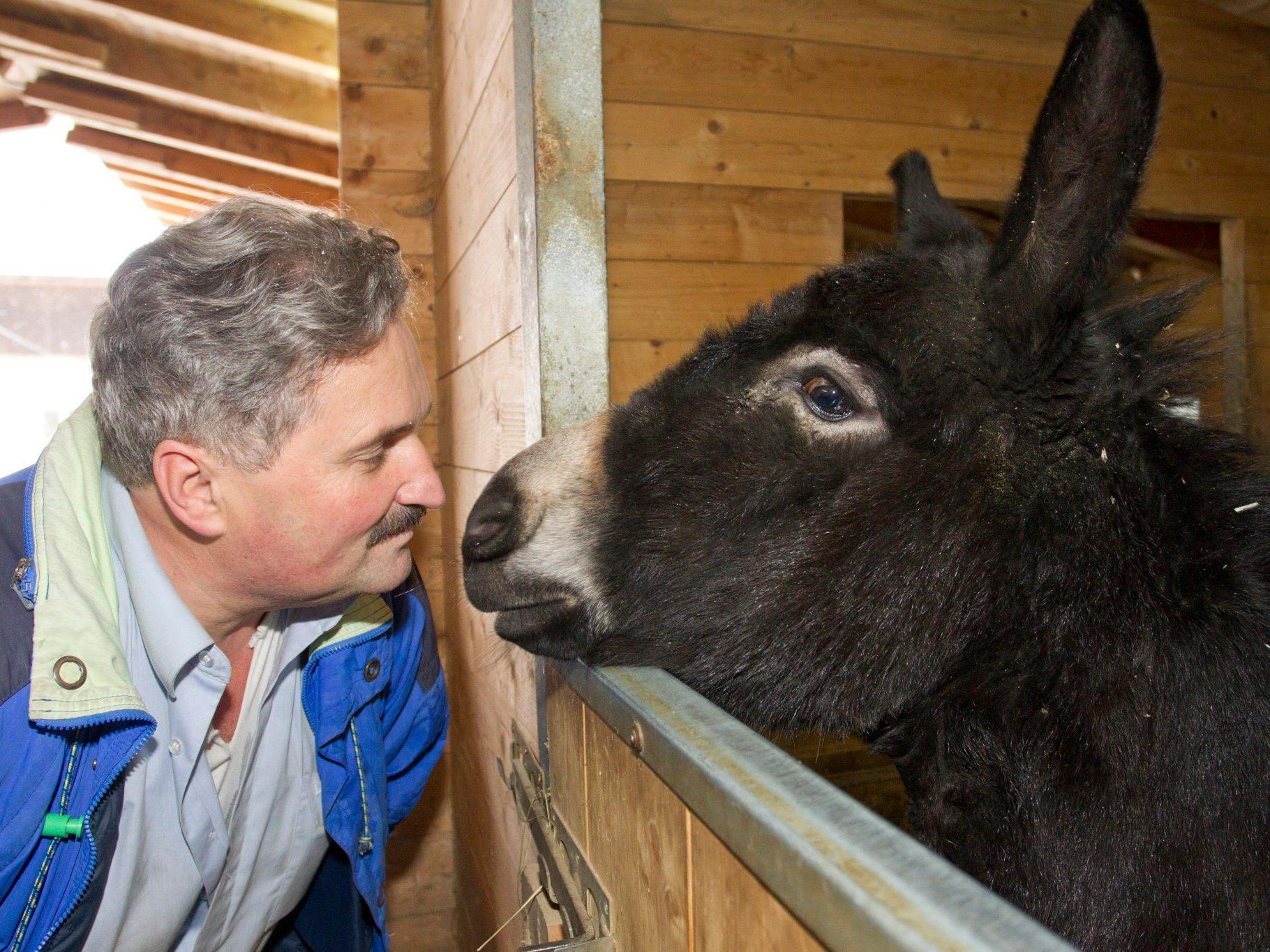 Rudi Längle benötigt monatlich gut 6000 Euro für seine Tiere.