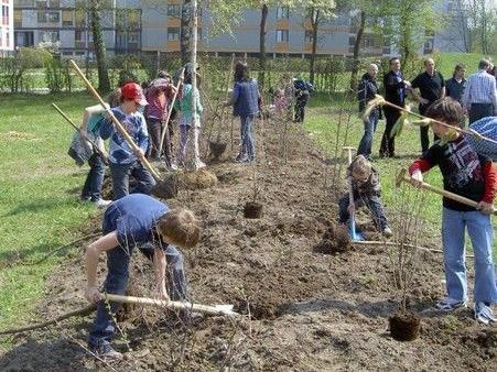 Aktive Mitarbeit von Kindern und Jugendlichen